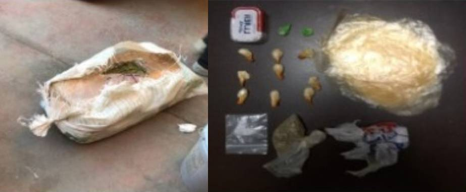 "Decomisan 10 kilos de marihuana en operativo ""Néctar -Alfa"""