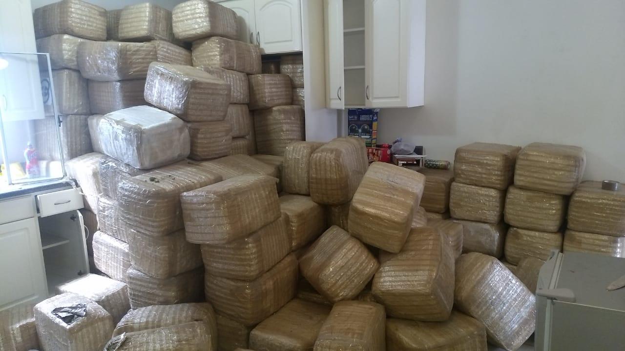 Catean casa en la Chapultepec y encuentran 2 toneladas de marihuana