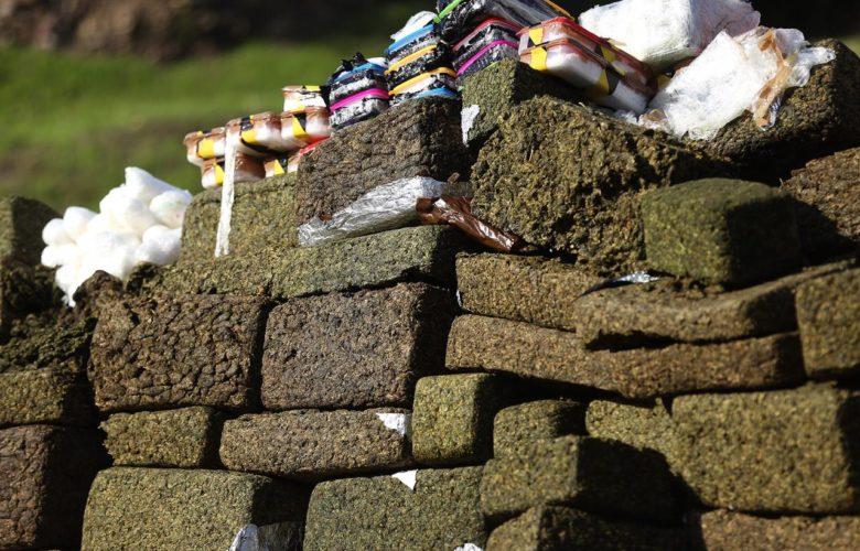 Incineran más de 6 toneladas de droga