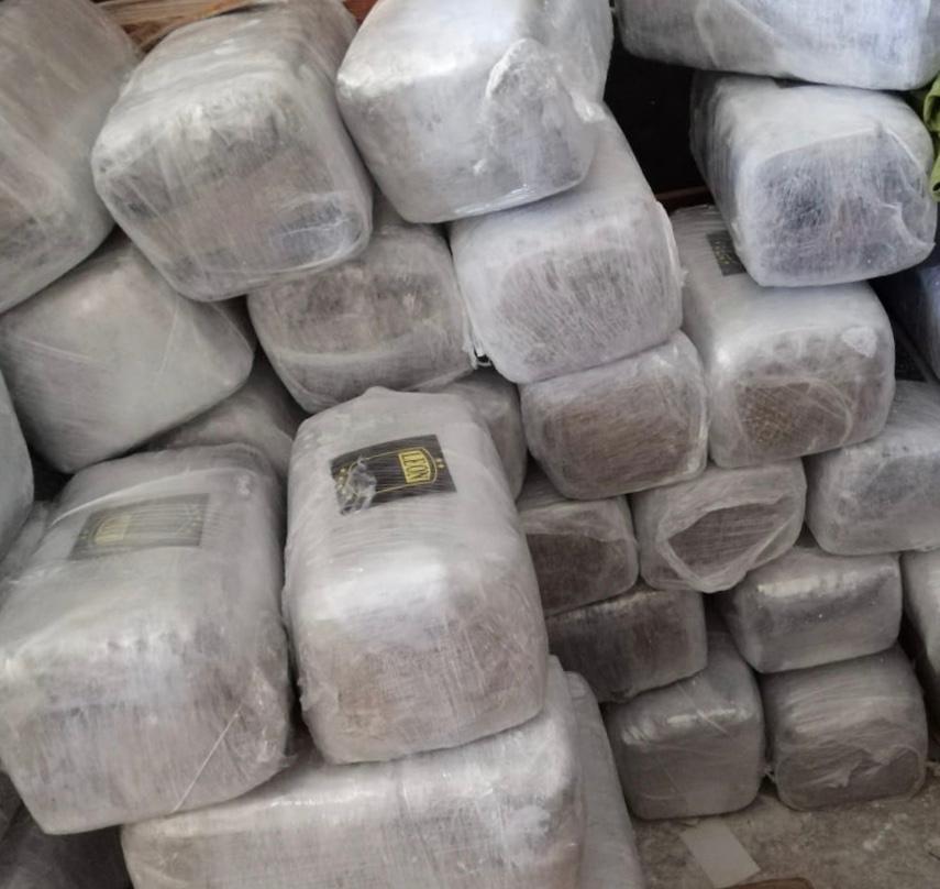 Localizan 5 toneladas de marihuana en cateo