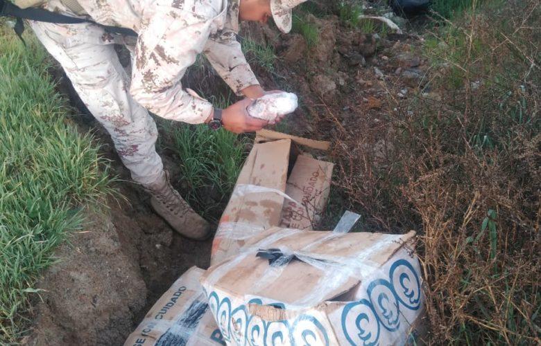 Localiza SEDENA 200 kilos de langosta congelada
