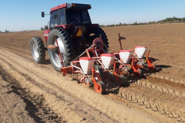 Emiten recomendaciones a empresas con actividad agrícola ante COVID-19