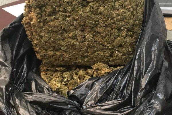 FEDEX empresa 'non grata' en BC por promover narcomenudeo