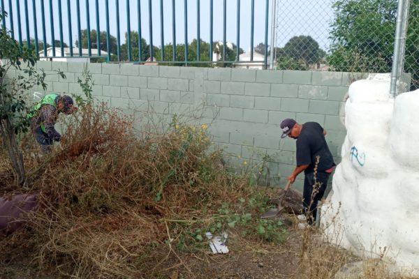 Participa personal de IMAC en actividades de labor social y limpieza de áreas públicas
