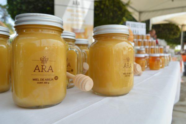 Impulsarán la producción de miel y cuidado de las abejas