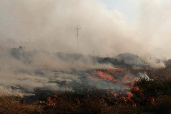 Se activa Comité Estatal del Manejo de Fuego para combatir más de 28 incendios