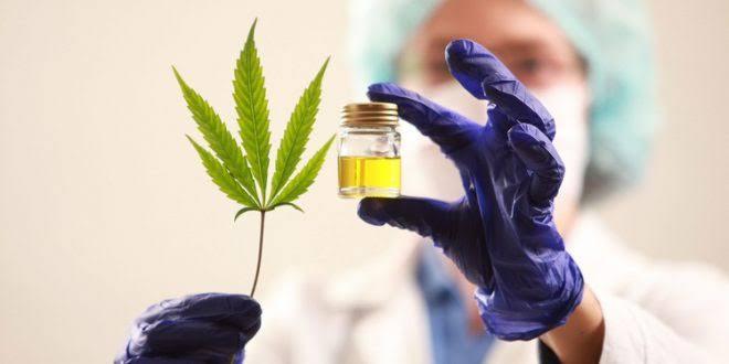 Poder Judicial de la Federación ordena a la SS uso de cannabis medicinal