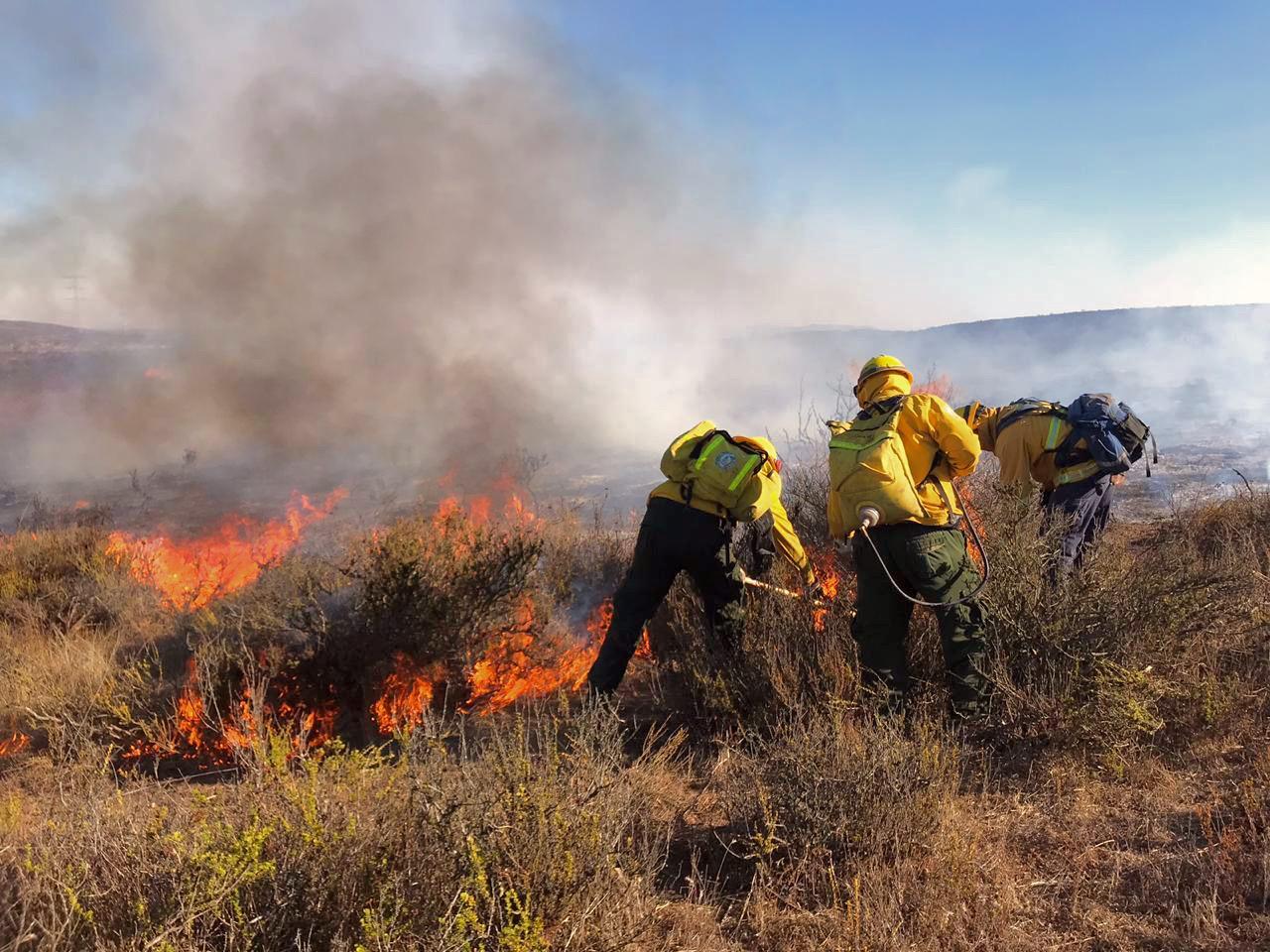 """Por Su Día """"Gracias"""" a los Combatientes de Incendios Forestales de Baja California: Ruiz Uribe"""