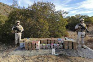 Narcos esconden cargamento de más de 133 MDP entre arbustos