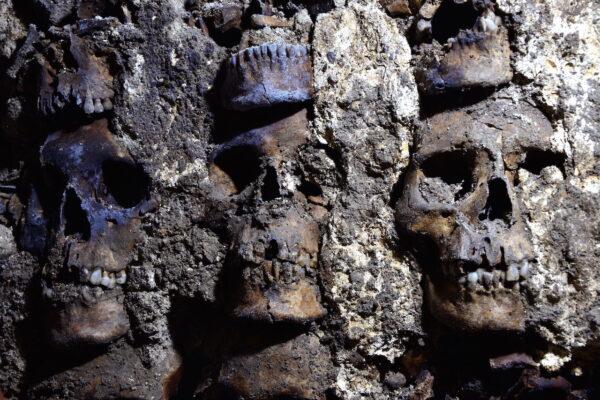 Arqueólogos localizan torre de cráneos del Huei Tzompantli de Tenochtitlan
