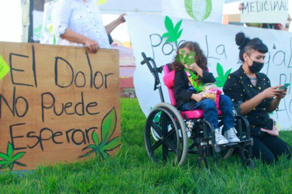 Reforestarán con cannabis el parque Benito Juárez en Tijuana