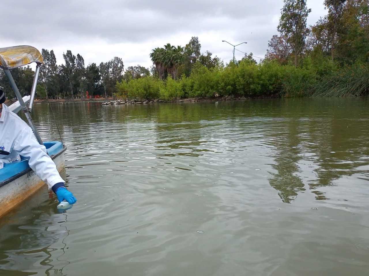 Agua en laguna del Parque de la Amistad ya no representa peligro para flora y fauna