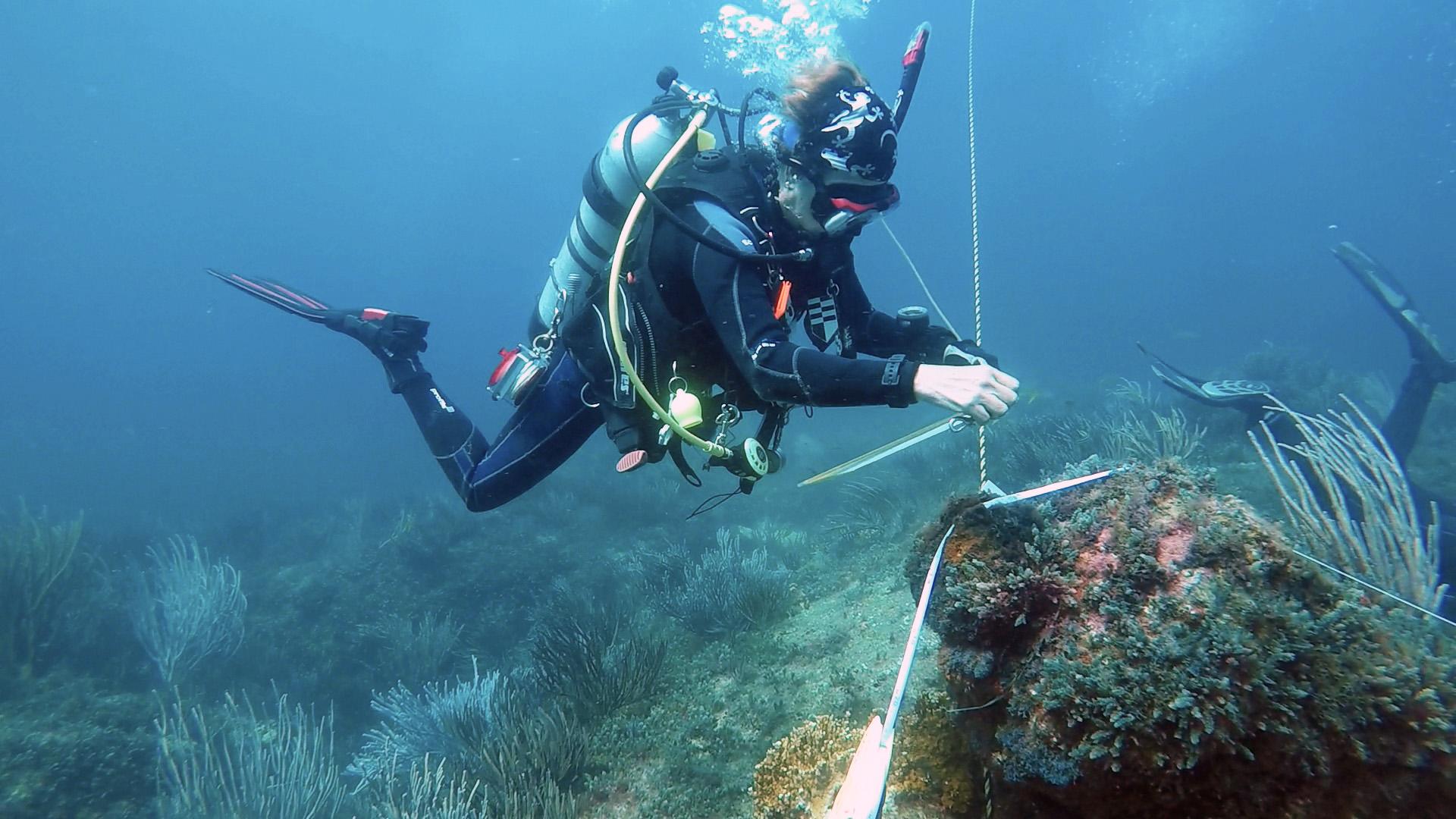 La arqueóloga subacuática Helena Barba es reelecta en el Consejo Asesor Científico y Técnico de la Convención 2001 de la UNESCO