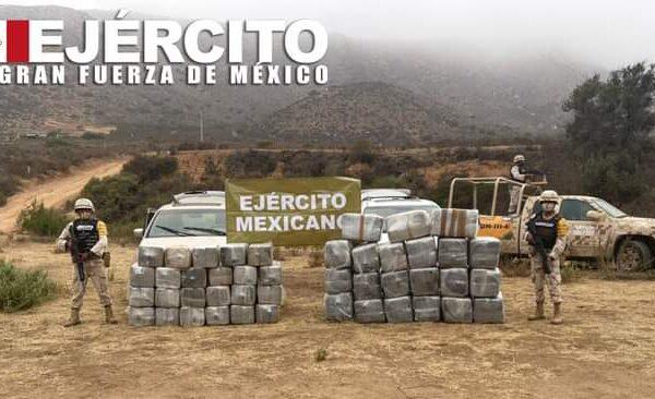 Ejército Mexicano aseguró más de 800 kilogramos de droga en Baja California