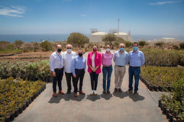 Infraestructura, energía y agua, vitales para el desarrollo de Baja California: Marina del Pilar