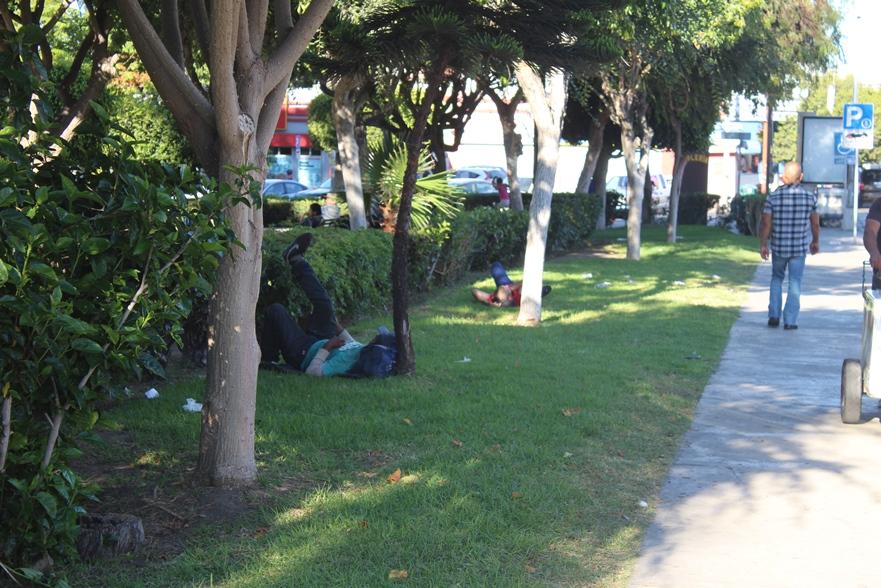 Usan indigentes Parque Teniente Guerrero de picadero y cantina