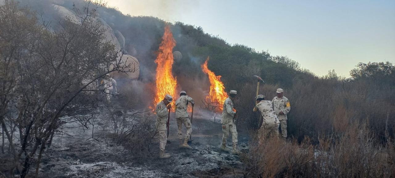 Ejército Mexicano participó en la sofocación de un incendio forestal en Tecate