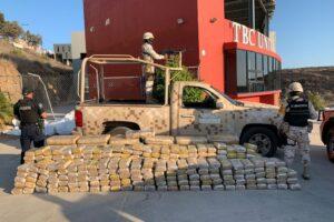 Ejército Mexicano localiza droga y destruye cinco plantíos de marihuana en Ensenada